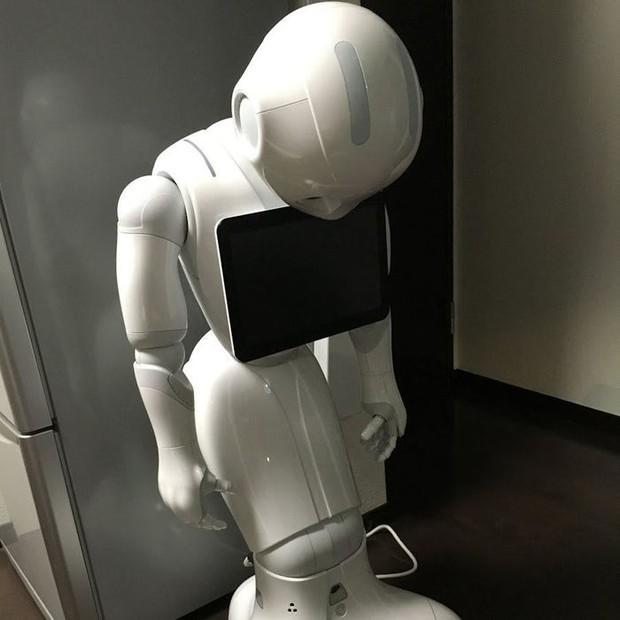 Robot siêu trí tuệ Pepper bị sa thải ở nhiều quốc gia, điều gì khiến các nhà sản xuất phải cúi đầu xin lỗi: Chúng tôi cũng bất lực rồi! - Ảnh 5.