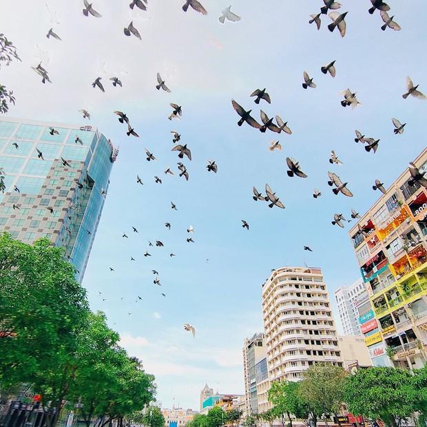 Sài Gòn: 30 điều nhất định PHẢI LÀM sau khi hết dịch, sẽ tuyệt hơn nếu được trải nghiệm cùng… người yêu! - Ảnh 17.
