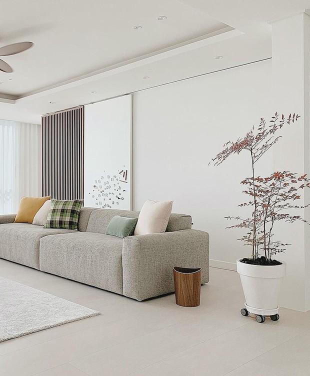 6 món đồ nội thất chuyên gia khuyên bạn nên xuống tiền: Lợi đơn lợi kép, đầu tư chắc chắn không hối hận - Ảnh 7.