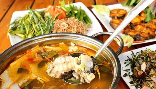 Việt Nam có thứ đặc sản tiền triệu được coi như linh dược, nhiều người nước ngoài cũng phải săn lùng - Ảnh 5.