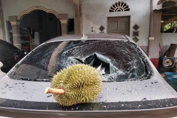 Trái sầu riêng này có gì đặc biệt mà giá lên tới 2,7 triệu đồng, đến cả Bộ trưởng Malaysia cũng muốn mua ăn thử? - Ảnh 2.