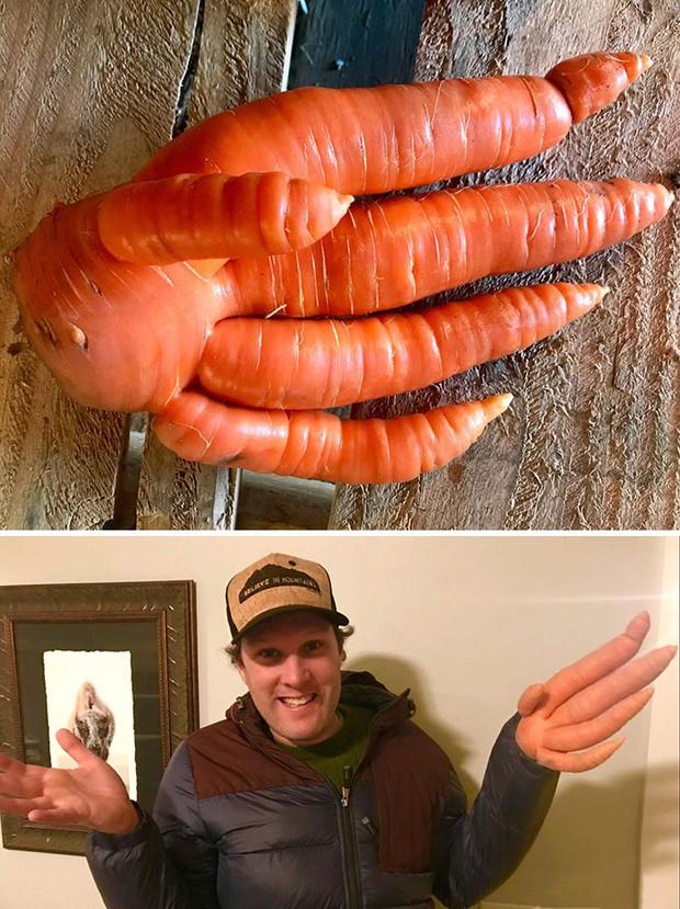 Té ngửa trước những màn biến hình kỳ dị của các loại rau củ quả, xem xong mới thấy đừng nên đùa với mẹ thiên nhiên!  - Ảnh 8.