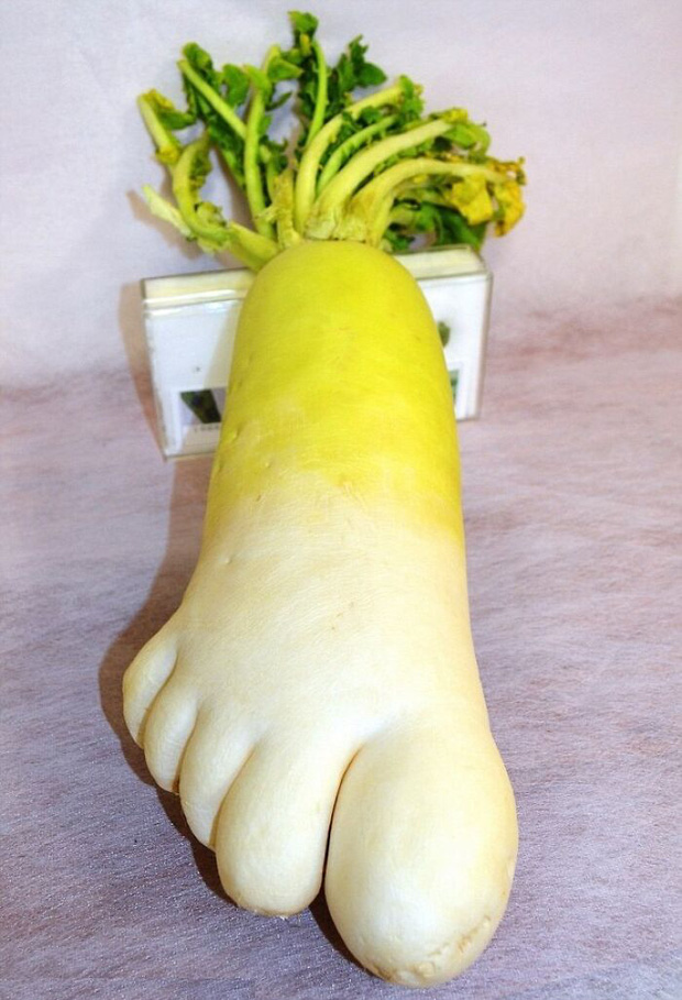 Té ngửa trước những màn biến hình kỳ dị của các loại rau củ quả, xem xong mới thấy đừng nên đùa với mẹ thiên nhiên!  - Ảnh 10.