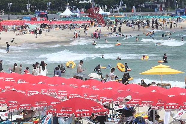 Nắng nóng kéo dài ở Hàn Quốc khiến 6 người thiệt mạng - Ảnh 1.