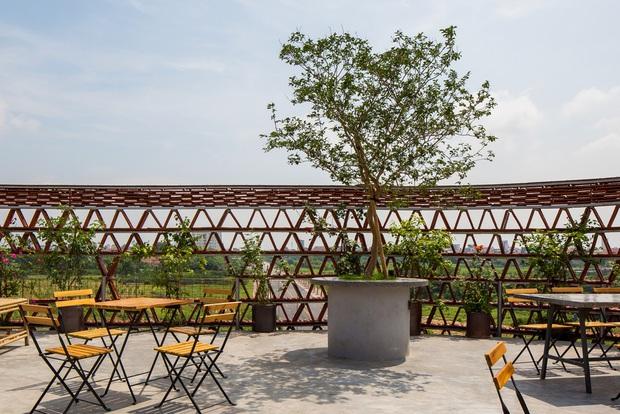 Hà Nội: Quán cà phê lấy cảm hứng từ cành cây và hang động của người tiền sử đẹp lạ trên báo Mỹ - Ảnh 9.