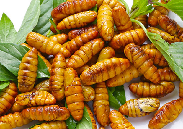 Việt Nam có loại đặc sản rất lạ lùng: Nhiều người ăn vào dị ứng nhưng vẫn cực hút khách - Ảnh 1.