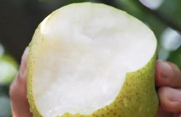 4 loại trái cây nữ giới tuyệt đối không nên ăn trong kỳ kinh nguyệt, không những khiến cơn đau bụng kinh nặng thêm mà còn dễ gây nhiễm lạnh, bệnh tật - Ảnh 1.