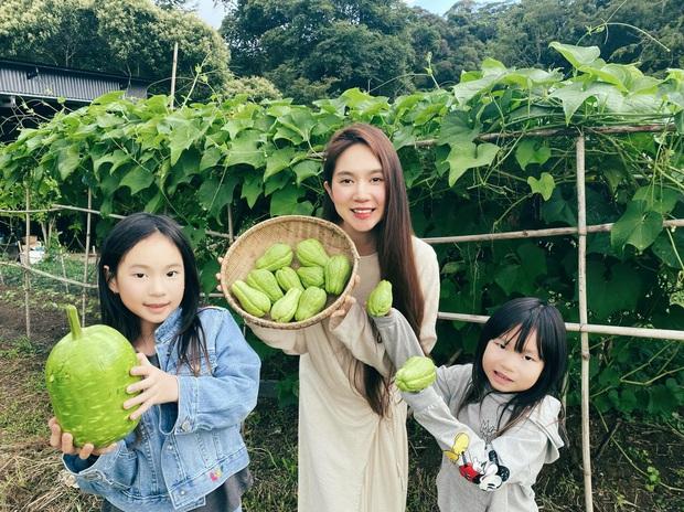 Ngoài biệt thự đắt đỏ ở Sài Gòn, Lý Hải - Minh Hà còn sở hữu nông trại thơ mộng ở Đà Lạt - Ảnh 4.