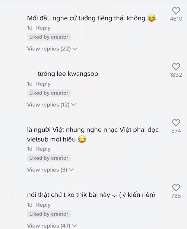 Cư dân mạng ngỡ ngàng, ngơ ngác khi Lee Kwang Soo hát nhạc Thái lời Việt nhưng giọng lại giống Lynk Lee? - Ảnh 4.