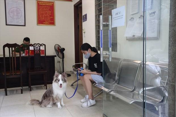 Dắt chó đi dạo, cô gái trẻ bị phạt 2 triệu đồng trong ngày đầu Hà Nội giãn cách: Tôi cho chó ra ngoài đi vệ sinh... chỉ ra ngoài 2 phút thôi - Ảnh 1.