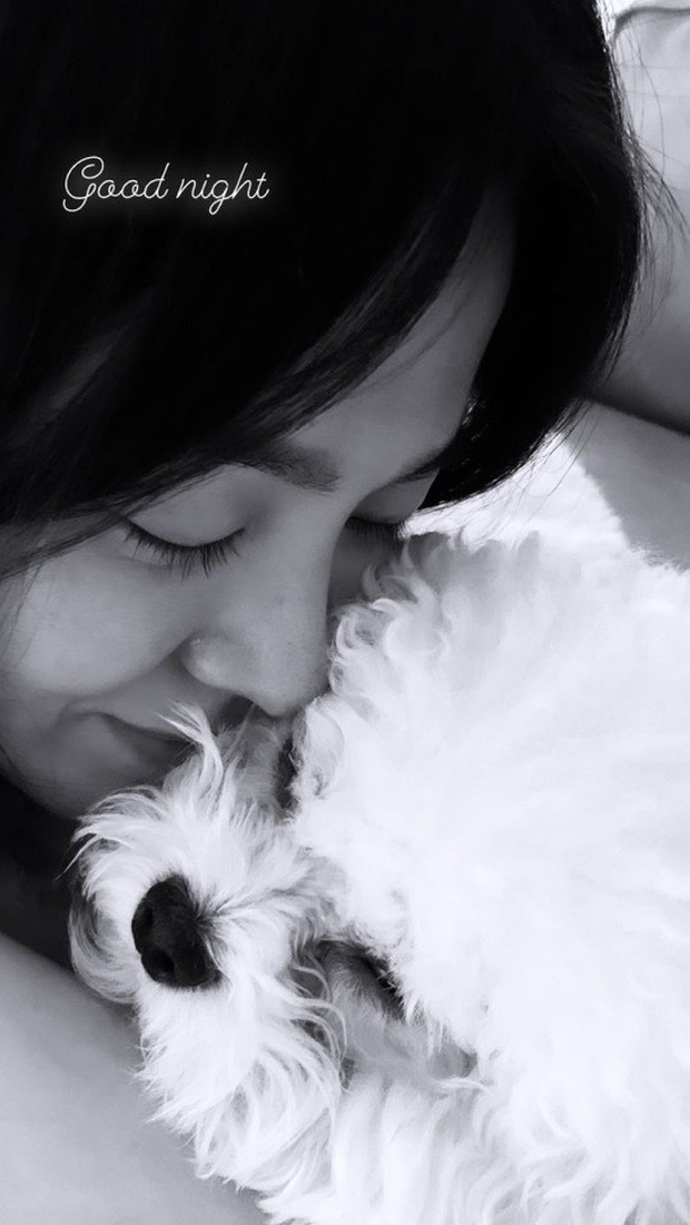 Song Hye Kyo đăng ảnh với cún cưng, vô tình để lộ nhan sắc thật khi để mặt mộc ở nhà giữa mùa dịch - Ảnh 2.