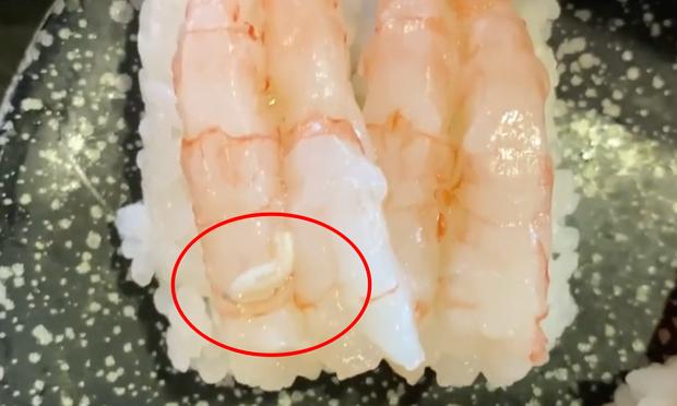 Thanh niên sốc nặng khi thấy con vật kinh dị bò nhúc nhích trong đĩa sushi, điều ngạc nhiên là sự cố này xảy ra... ở Nhật?  - Ảnh 2.
