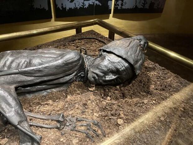 Bữa ăn cuối cùng trong bụng xác ướp 2.400 năm tuổi dưới đầm lầy - Ảnh 1.