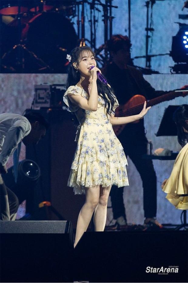 IU từng bị chính khán giả của mình tấn công ngay tại sân khấu, fan xem mà xót xa: Idol cũng biết đau đấy ạ! - Ảnh 6.