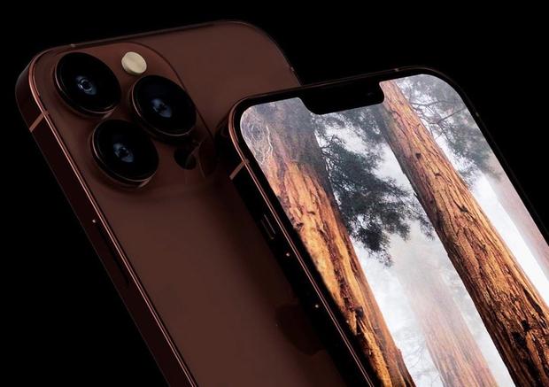 Ngắm concept iPhone 13 màu nâu đồng cực lạ mắt - Ảnh 4.