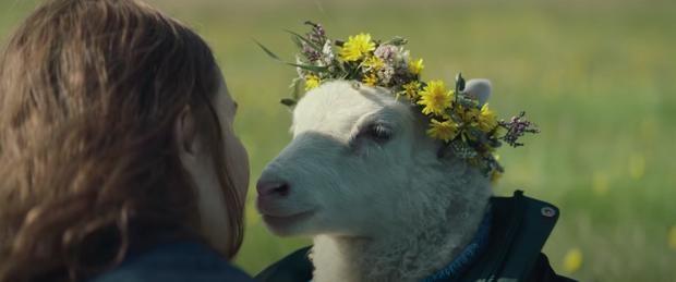 Phim kinh dị về thần thoại Bắc Âu gây sốc óc vì cặp đôi hiếm muộn nuôi... cừu làm con, trả giá kinh hoàng vì chống lại thiên nhiên - Ảnh 4.