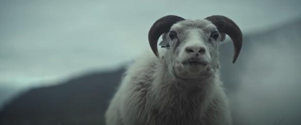 Phim kinh dị về thần thoại Bắc Âu gây sốc óc vì cặp đôi hiếm muộn nuôi... cừu làm con, trả giá kinh hoàng vì chống lại thiên nhiên - Ảnh 5.