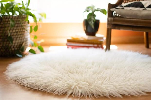 Trong phòng ngủ có 7 thứ bẩn kinh dị nhưng nhiều người quên vệ sinh, 1 món chứa vi khuẩn nhiều gấp 4000 lần toilet - Ảnh 9.