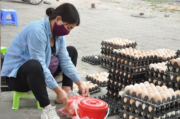 Giải mã hiện tượng trứng gà tăng giá kỷ lục, thương lái tranh nhau mua giữa tâm dịch - Ảnh 3.