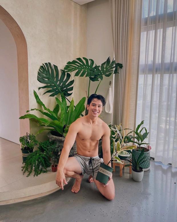 2 loại cây hot hit dàn celeb Việt đang thi nhau trưng: Cành thạch nam cắm góc nào cũng nghệ, trầu bà Nam Mỹ khiến nhà bừng sức sống - Ảnh 8.