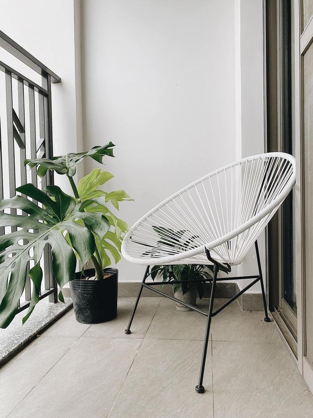 2 loại cây hot hit dàn celeb Việt đang thi nhau trưng: Cành thạch nam cắm góc nào cũng nghệ, trầu bà Nam Mỹ khiến nhà bừng sức sống - Ảnh 10.