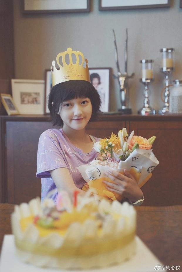 Con gái cưng của Chân Hoàn - Lung Nguyệt công chúa dậy thì xinh hết nấc, còn trở thành đại diện Hoa ngữ tiến đánh Oscar? - Ảnh 11.
