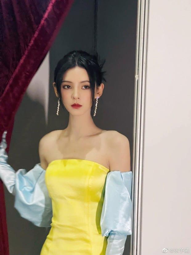 Tình cũ của thiếu gia giàu nhất Trung Quốc bị tố sửa cả mặt, từ nhan sắc bình thường tới nữ thần visual đẳng cấp xứ Trung - Ảnh 10.