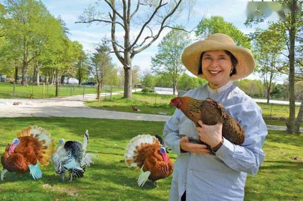 Ly hôn và thất nghiệp ở tuổi 44, nữ minh tinh về quê làm ruộng, nuôi gà; 20 năm sau, cô trở lại như một nữ thần và khiến cả thế giới phải kinh ngạc! - Ảnh 7.