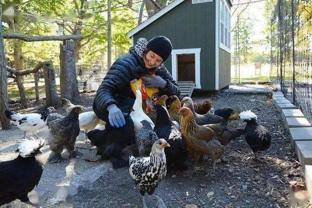 Ly hôn và thất nghiệp ở tuổi 44, nữ minh tinh về quê làm ruộng, nuôi gà; 20 năm sau, cô trở lại như một nữ thần và khiến cả thế giới phải kinh ngạc! - Ảnh 8.