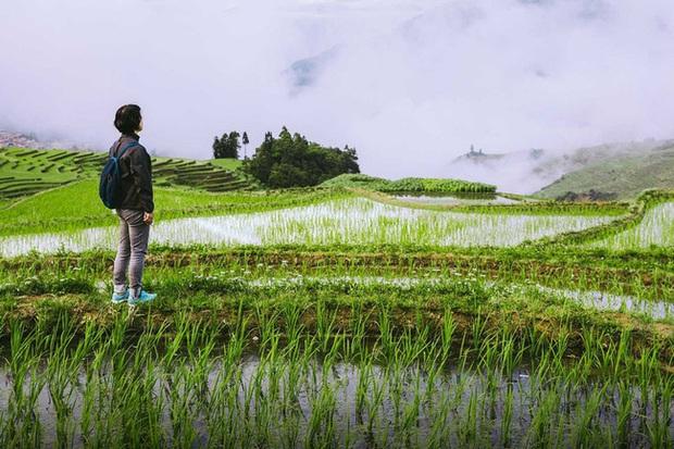 Giới trẻ Trung Quốc vỡ mộng khi bỏ phố về quê: Bị xem thường vì thất bại nơi thành thị, không tránh được ánh mắt soi mói của láng giềng - Ảnh 1.