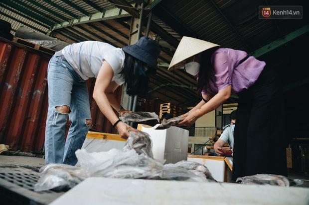 Người Sài Gòn được tiếp sức 3 tấn cá biển đầu tiên từ bà con Quảng Bình - Ảnh 6.