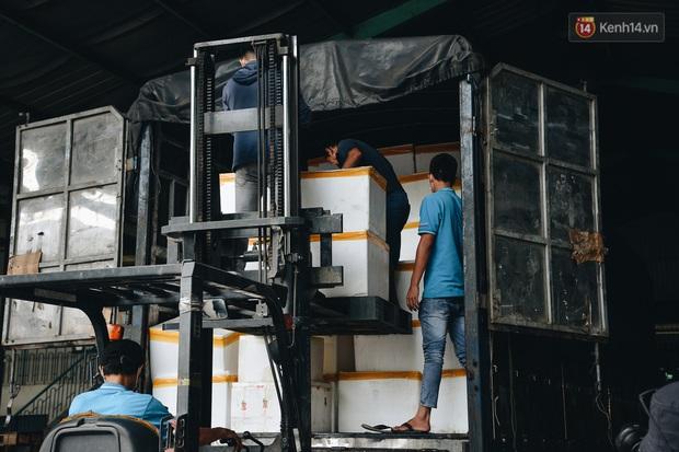 Người Sài Gòn được tiếp sức 3 tấn cá biển đầu tiên từ bà con Quảng Bình - Ảnh 5.