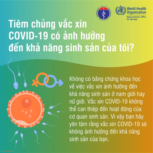 Tiêm chủng vaccine Covid-19 có ảnh hưởng đến khả năng sinh sản không? - Ảnh 1.