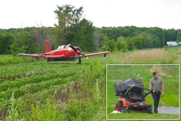 Người phụ nữ đang cắt cỏ thì bị máy bay đâm chết - Ảnh 1.