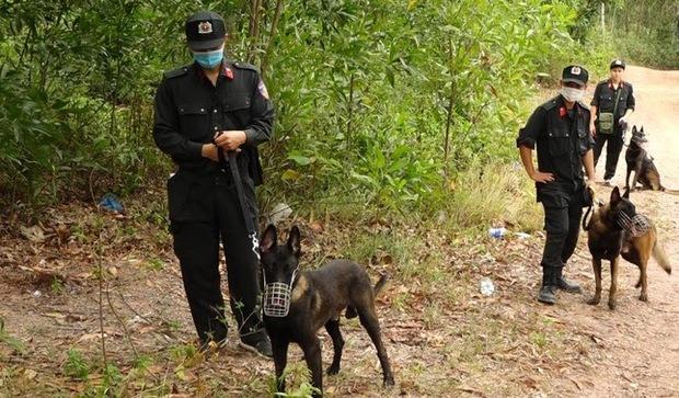 Huy động hơn 300 cảnh sát truy tìm nghi can sát hại mẹ vợ ở Quảng Bình - Ảnh 1.
