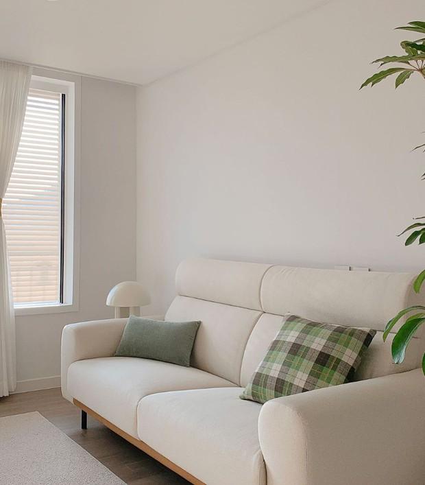 6 thói quen tai hại rút ngắn tuổi thọ của ghế sofa, cái thứ 3 khiến nhiều người giật mình - Ảnh 2.