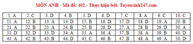 Đáp án đề thi môn Tiếng Anh tốt nghiệp THPT 2021 tất cả các mã đề - Ảnh 2.