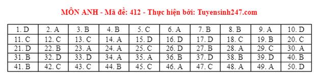 Đáp án đề thi môn Tiếng Anh tốt nghiệp THPT 2021 tất cả các mã đề - Ảnh 12.