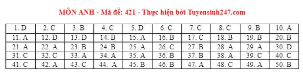 Đáp án đề thi môn Tiếng Anh tốt nghiệp THPT 2021 tất cả các mã đề - Ảnh 21.