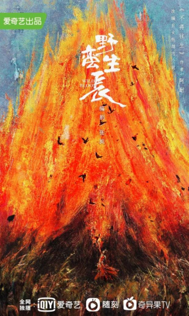 Mặc kệ Phùng Thiệu Phong, Triệu Lệ Dĩnh một mình comeback trong Minh Lan Truyện phiên bản hiện đại? - Ảnh 2.
