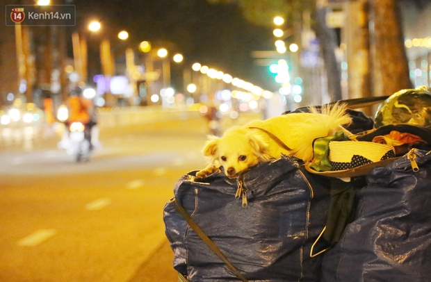 Chuỗi ngày sống thật chậm ở Sài Gòn: Nghỉ mệt 15 ngày rồi sẽ khỏe lại, mọi người ráng đợi tý nghen! - Ảnh 2.