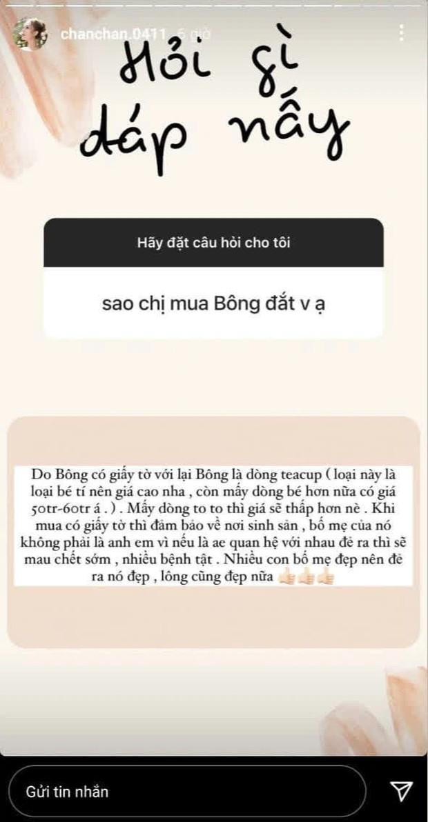 Vợ streamer giàu nhất Việt Nam mua cún cưng giá 23 triệu đồng - Ảnh 4.