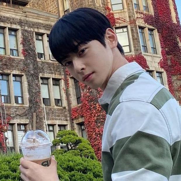 Có một trường đại học là bối cảnh của cả tá phim Hàn đình đám, nhìn Cha Eun Woo tới lớp mà muốn nhập học liền! - Ảnh 4.