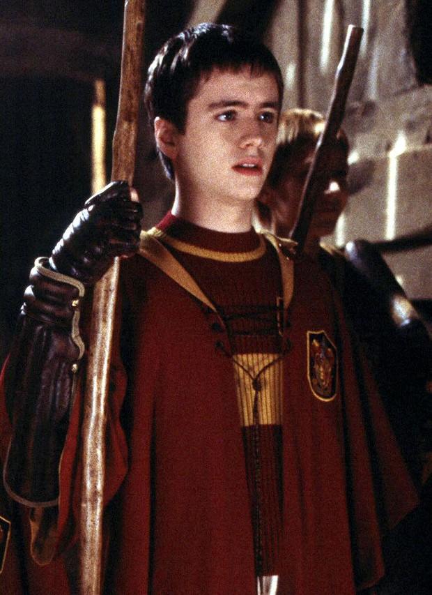 14 khoảnh khắc chứng tỏ Harry Potter chi tiết đến sợ, dự báo luôn kết cục của Voldemort mà chẳng ai để ý! - Ảnh 15.