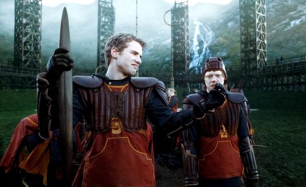 14 khoảnh khắc chứng tỏ Harry Potter chi tiết đến sợ, dự báo luôn kết cục của Voldemort mà chẳng ai để ý! - Ảnh 10.