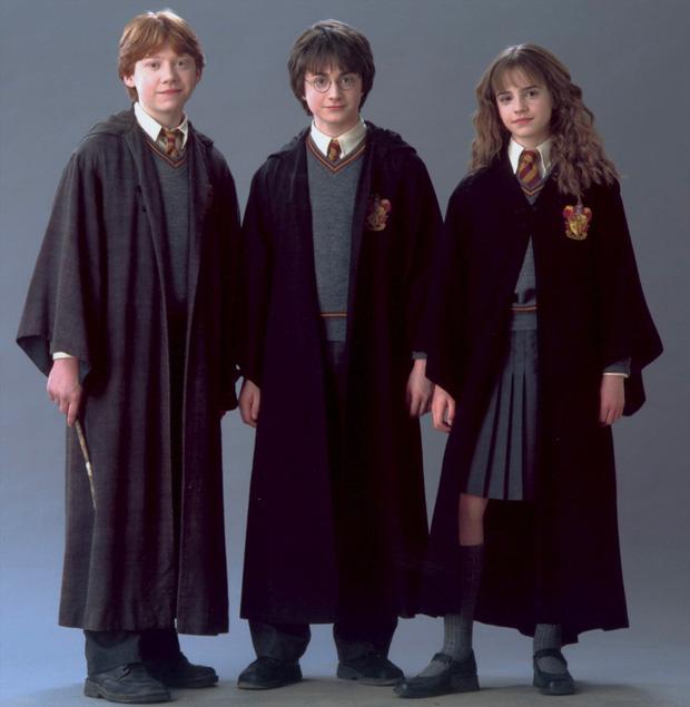 14 khoảnh khắc chứng tỏ Harry Potter chi tiết đến sợ, dự báo luôn kết cục của Voldemort mà chẳng ai để ý! - Ảnh 6.