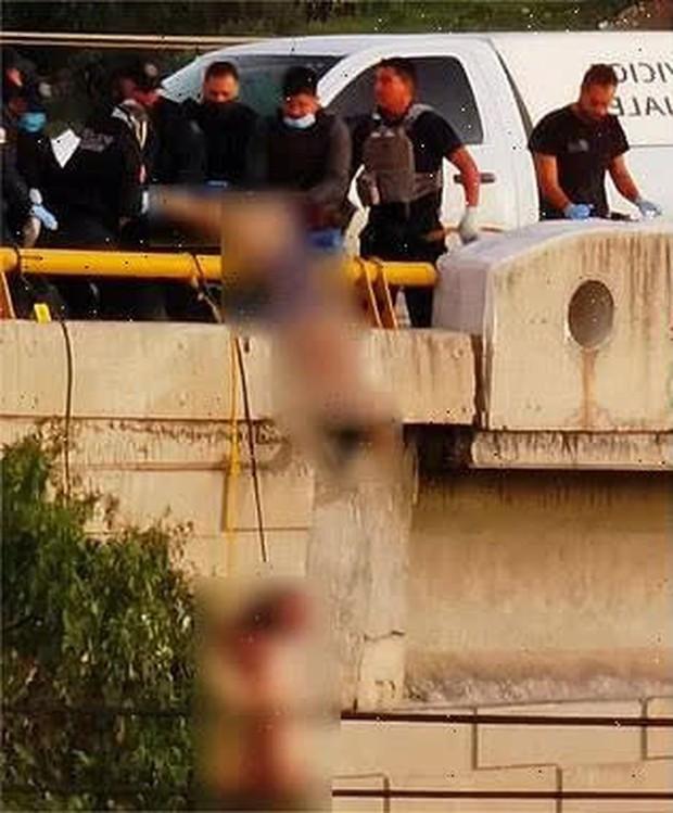 Sáng sớm phát hiện 6 thi thể nam giới bị treo cổ trên thành cầu trong tình trạng bán khoả thân, cảnh tượng khủng khiếp gây ám ảnh tột độ  - Ảnh 2.