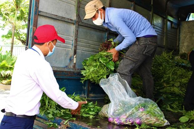 Nông dân vùng xanh ở Đà Nẵng gom rau xanh, nông sản gửi tặng vùng đỏ Sơn Trà - Ảnh 2.