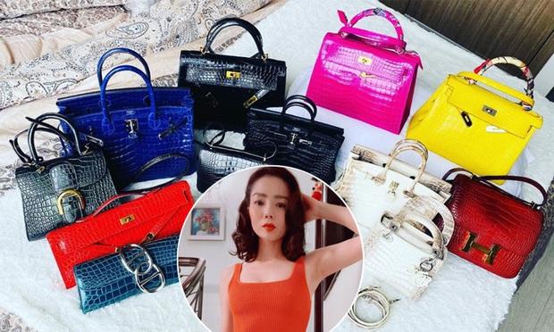 Lệ Quyên góp túi Hermès trị giá khủng đến mức khiến Xuân Lan thảng thốt vào quỹ đấu giá giúp Sài Gòn chống dịch - Ảnh 6.