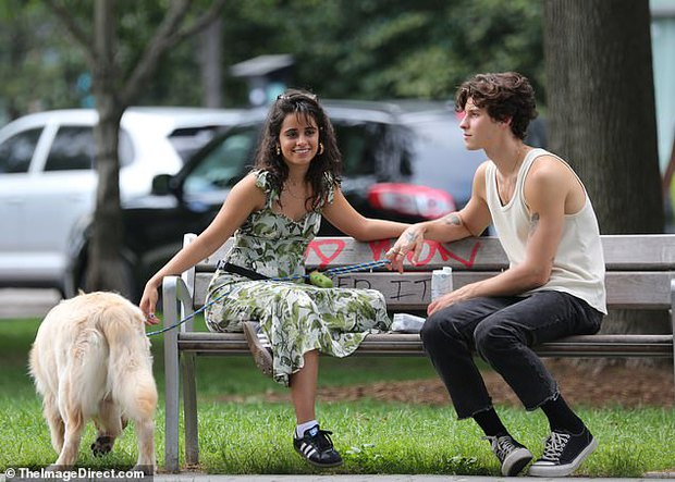 Shawn - Camila đi công viên: Chàng vẫn mlem hết sức, nàng bỗng được chúc mừng vì nghi vấn mang thai - Ảnh 4.